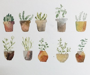 cactus and watercolor image