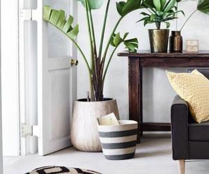interior, decor, and green image