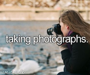photo, photography, and photograph image