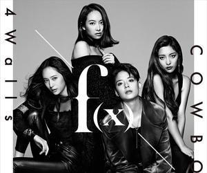 f(x) image