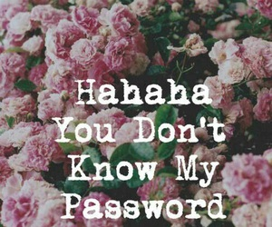password, flowers, and wallpaper image