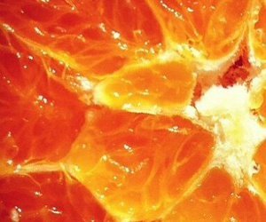 orange, orange and yellow, and pintrest image