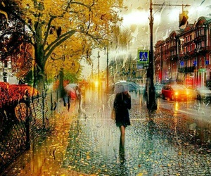 autumn, rain, and leaves image