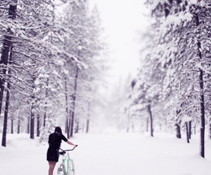snow, bike, and winter image