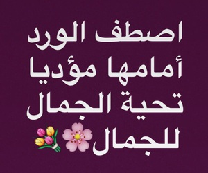 snap, ياسمين, and الجمال image