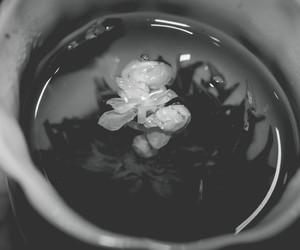 осень, чай, and фото image