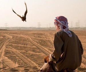 arabic, beautiful, and desert image