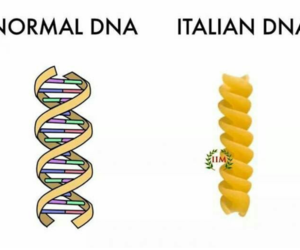 funny, DNA, and italian image