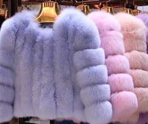 pink, blue, and fur image
