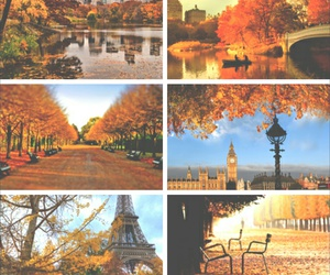 autumn, beauty, and cities image