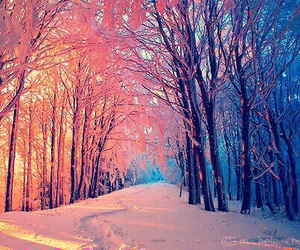 autumn, invierno, and pictures image