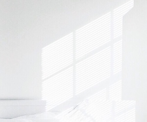white, aesthetic, and window image