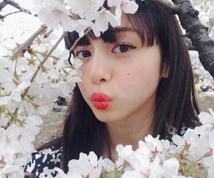 girl, japanese, and sakura image