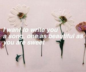 one direction, flowers, and Lyrics image