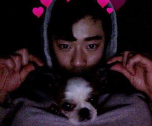 boy, dog, and asian boy image