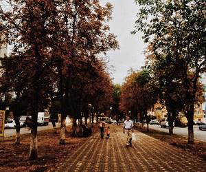 Image by Almaz Memmedova