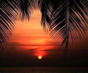 amazing, sea, and summer image