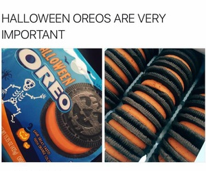 Cookies, cool, and Halloween image