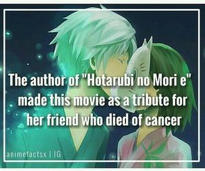 anime, hotarubi no mori e, and anime facts image