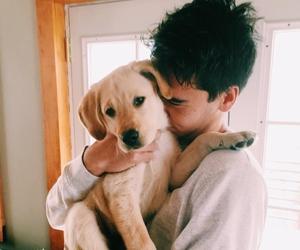 dog, animal, and boy image