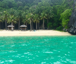 beach, summer, and Philippines image
