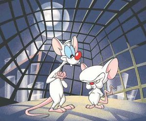 brain, cartoons, and pinky and the brain image