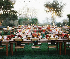 wedding, autumn, and lights image