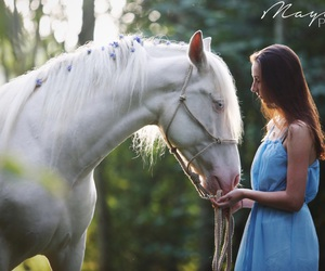 Dream, flowers, and horse image