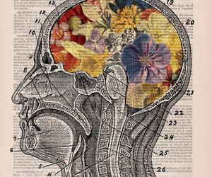 art, brain, and flowers image