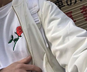 white, rose, and aesthetic image
