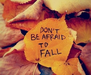 fall, leaves, and quotes image