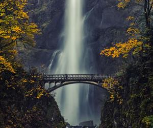 nature, waterfall, and bridge image
