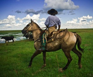 countryside, gaucho, and horse image
