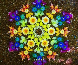 colorfull, flower, and mandala image