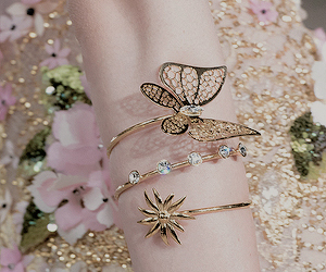 fashion and butterfly image