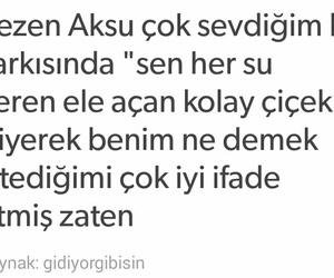 ask, sezen aksu, and çiçek image