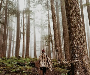 cozy, forest, and girl image