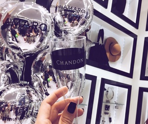 chandon and michelle garcia image