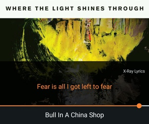 bull, fear, and light image