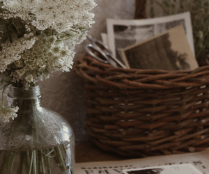 rustic, white flower, and simple image