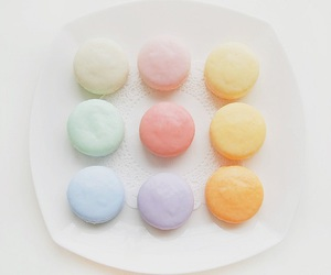 pastel, food, and macaron image