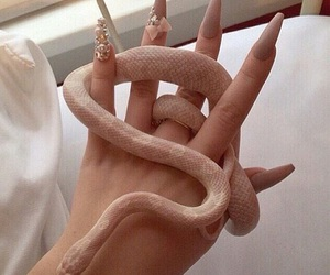 nails, snake, and pink image