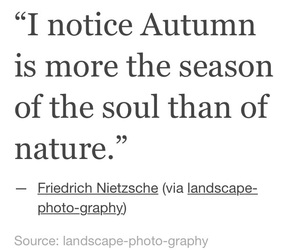 autumn, fall, and lifestyle image