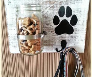 animal and jar image