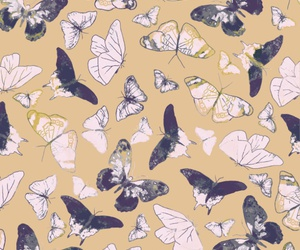 background, butterflies, and cream image