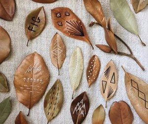 leaves, autumn, and fall image