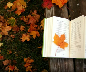 books, autumn, and leaves image