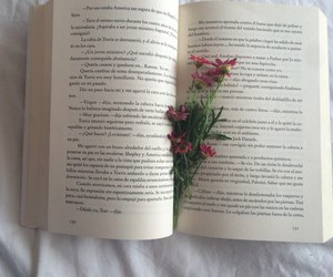book, grunge, and pale image