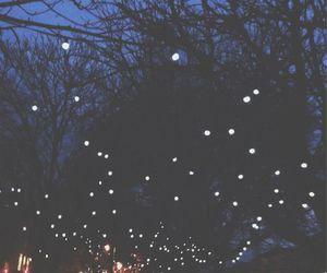 light, night, and tree image