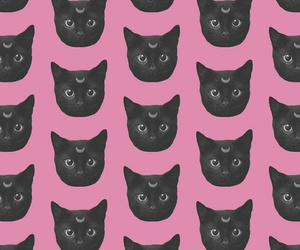 black cat, cool, and pink image